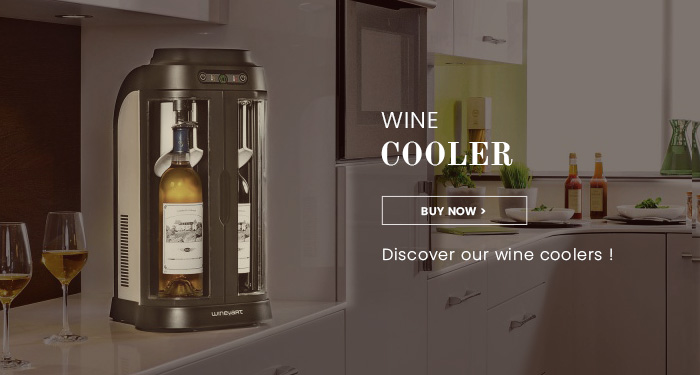 Discover our wine bottle cooler