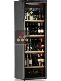 Dual temperature wine cabinet for storage and service CALICE
