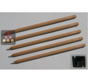 Set of 5 chalks + holder ARTEVINO