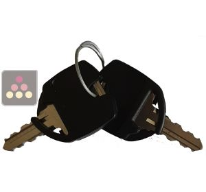 2 replacement keys for Artevino wine cabinet with solid door