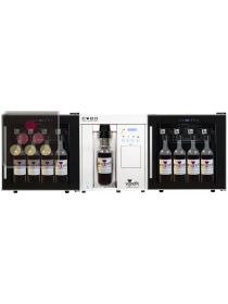 Dual temperature by the glass wine dispenser for 20 bottles (75 cl and magnum) WINEFIT