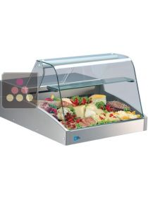 Refrigerated Counter Display Case for Cheese,Meats,delicatessen and fresh produce TECNOX
