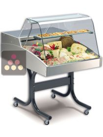 Refrigerated Counter Display Case for Cheese, Meats, delicatessen and fresh produce TECNOX