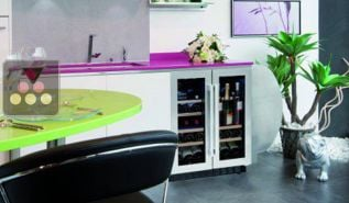 Multipurpose Dual temperature built-in wine cabinet