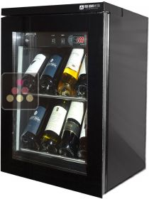 Customized wine cabinet for wine preservation or service totally silent