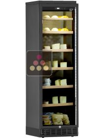 Built-in Cheese preservation cabinet up to 90Kg CALICE