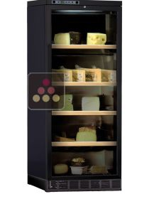 Cheese preservation cabinet built in up to 80Kg CALICE