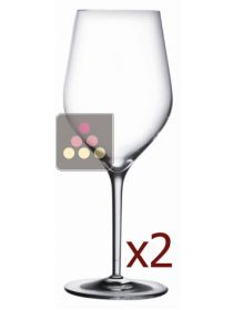 Good Size n°3 - Pack of 2 glasses L'ATELIER du VIN