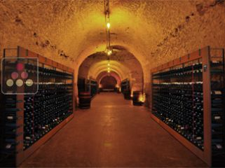 L'ATELIER DU VIN intelligent Wine Library - 330 bottles