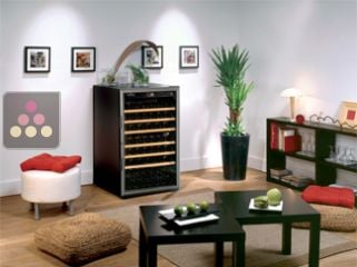 Single temperature wine cabinet for ageing & storage or service